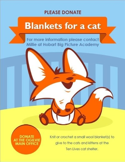Blankets_for_cats.jpg
